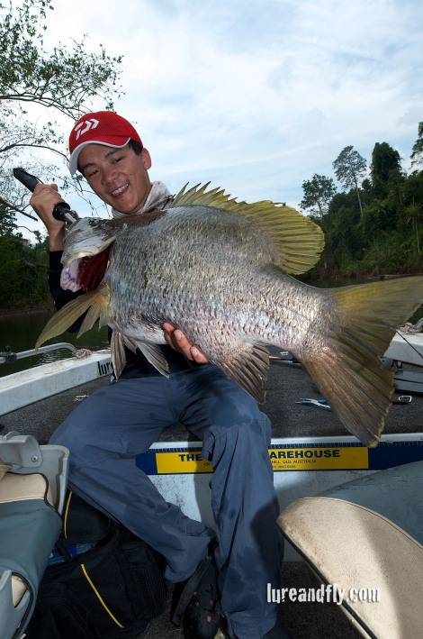 PNG Black Bass 2
