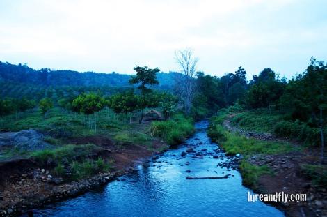 PNG River life 1