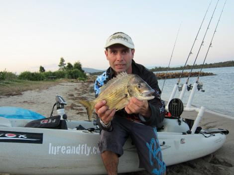 southern bream 008