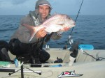 lure and fly snapper 1