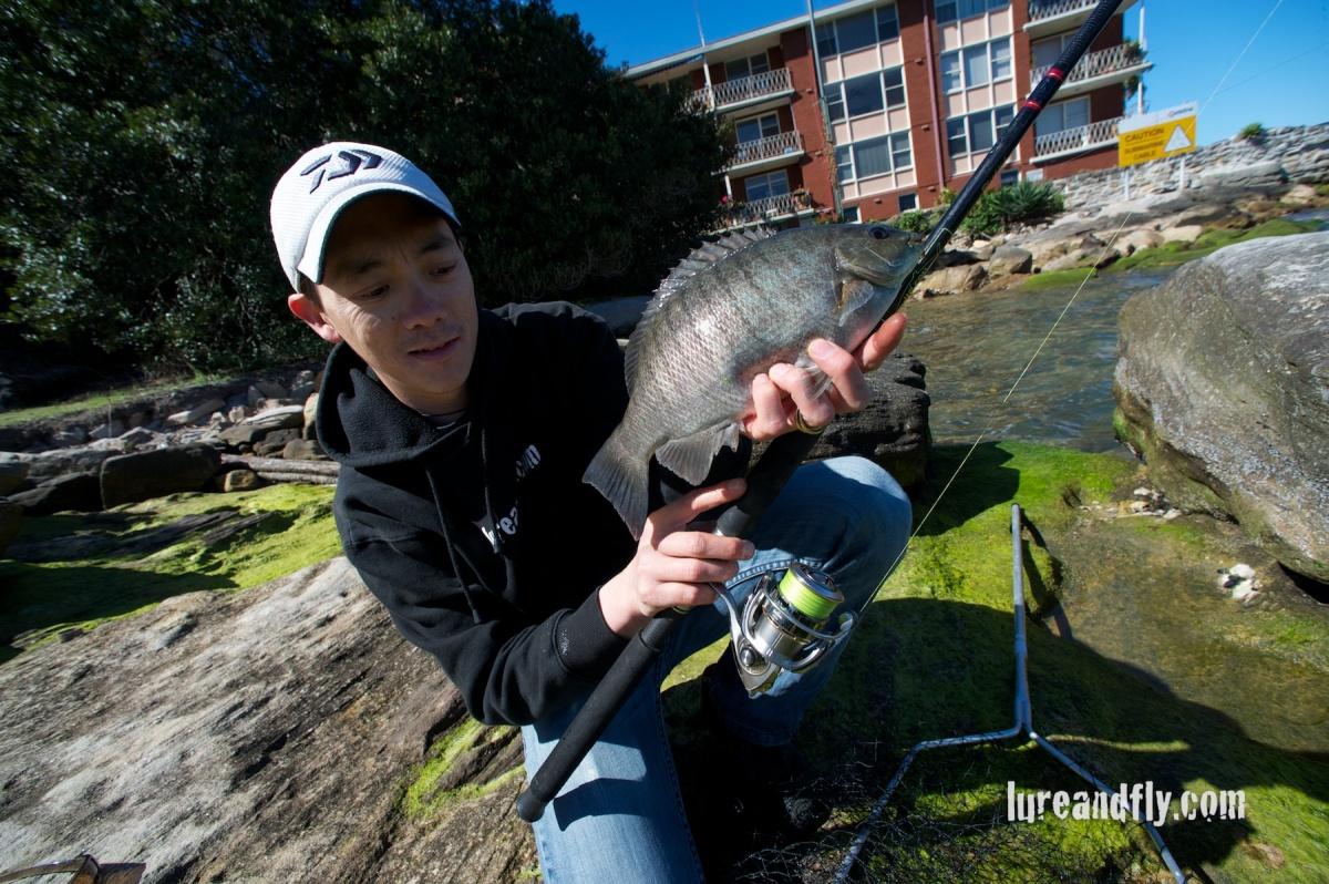 Blackfish 012