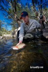 Cox's River Trout 009