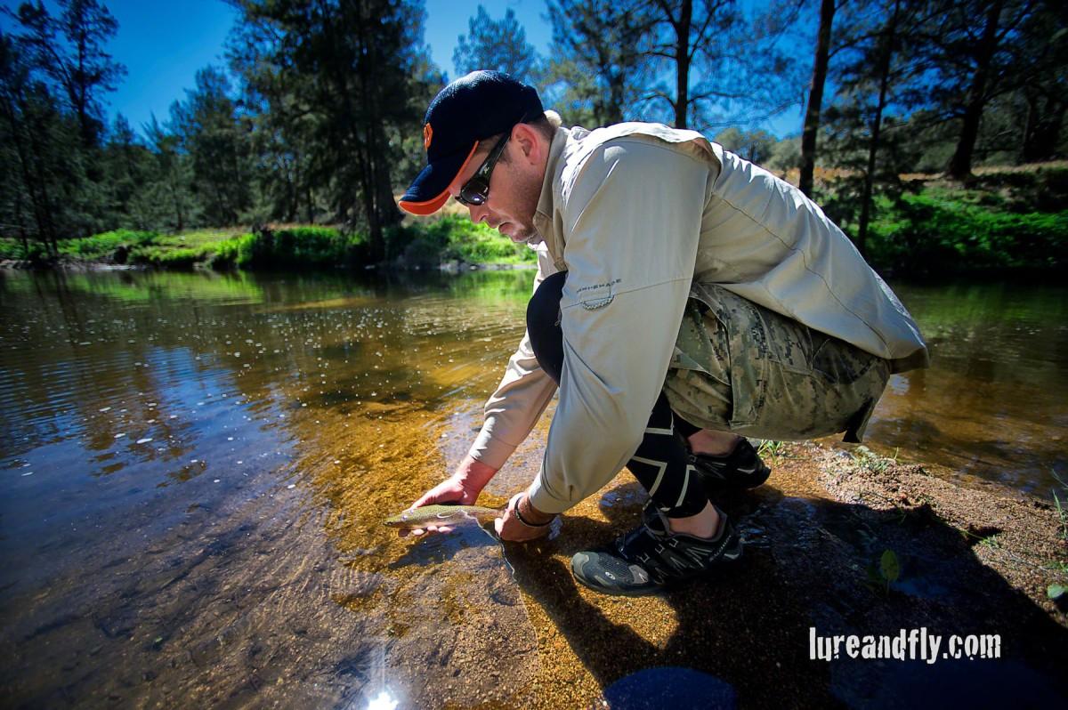 Cox's River Trout 013