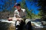 Cox's River Trout 021