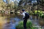 Cox's River Trout 023