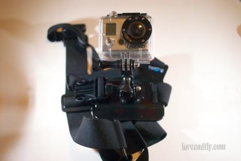 Cameras 002