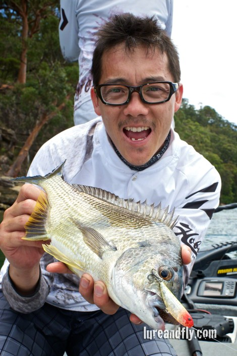Hawkesbury topwater bream