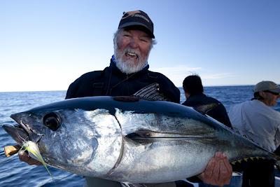 br Morse southern bluefin tuna