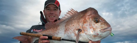 Scott Lear Snapper feature