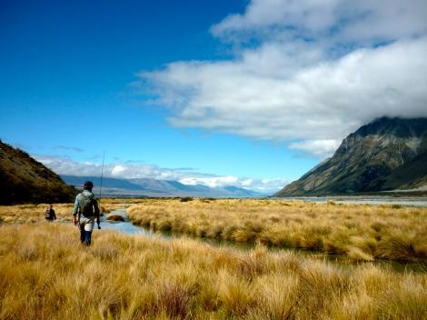 South Island NZ 2