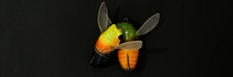Fish Arrow Cover Cicada - Feature