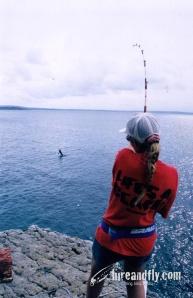 LBG Marlin Hookup