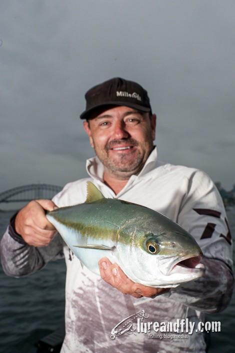 Justin Sydney Harbour Kingfish