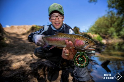 Dry Fly Trout008
