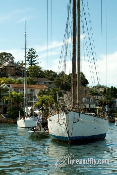 ABT Sydney Harbour 15032014 053