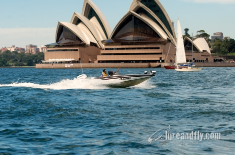 ABT Sydney Harbour 15032014 125