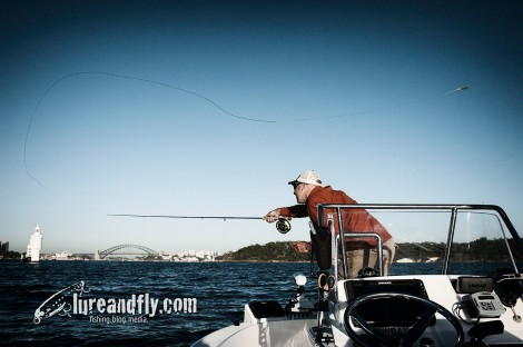 Sydney Flyfishing Tours 012
