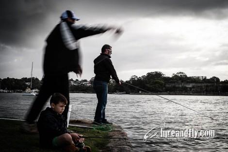 Lureandfly_blackfish012