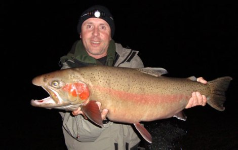Image from http://www.nzfishing.com/fishingguides/erfishingguides/milesrushmerguiding/milesrushmerguiding.htm