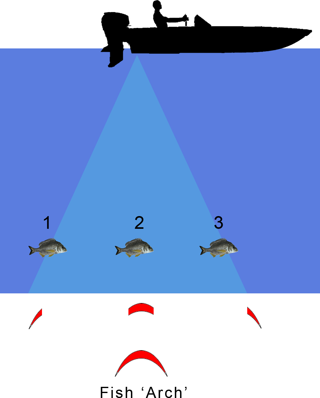 Sounder basics tips on how to read your fish finder for How to read fish finder