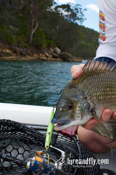 Surface fishing for Bream 01